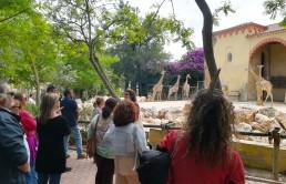 Arte Central - Educação Ambiental pela Arte